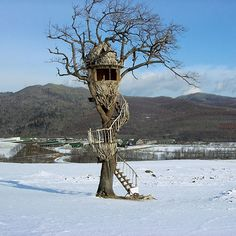 The Driftwood Egg Treehouse - built by famous treehouse designer Takashi Kobayash of driftwood gathered from a nearby beach for a Nescafe television commercial, this lovely structure is nestled on Japan's northernmost island of Hokkaido.
