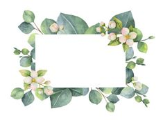 Watercolor green floral card with eucalyptus leaves, Jasmine flowers and branches isolated on white background. Illustration for cards, wedding invitation, save the date or greeting design. Watercolor Logo, Watercolor Flowers, Green Watercolor, Instagram Feed Theme Layout, Page Borders Design, Wedding Cards Handmade, Flower Logo, Flower Clipart, Jasmin