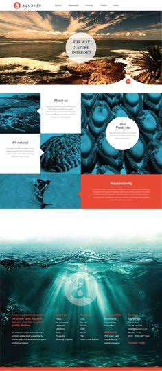 Web Design, UX, UI, Abalone Website, Blue, Corporate Web Design, Abalone Farming, Home Page, Landing Page