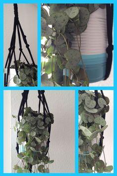 Suspension avec du fil zpagetti et pot DIY avec une conserve  #macrame #zpagetti #suspension #plantes #can #DIY
