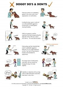 Doggy Do's and Don'ts