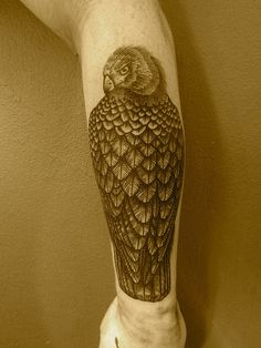 Resting eagle on - Fore arm Tattoo,