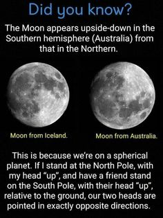 Moon: Did you know. - Ewww Meme - Moon: Did you know. The post Moon: Did you know. appeared first on Gag Dad. Astronomy Facts, Space And Astronomy, Astronomy Pictures, Astronomy Quotes, Astronomy Science, Astronomy Tattoo, Cosmos, Carl Sagan, The More You Know