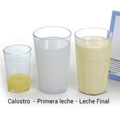 Todo sobre el calostro #calostro #lactancia #unamamanovata ▲▲▲ www.unamamanovata.com ▲▲▲