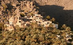 Things not to miss in Oman   Photo Gallery   Rough Guides