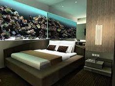 Aquarium Wall looks twice as big when reflected in the mirrored wall. Aquarium Design, Wall Aquarium, Home Aquarium, Aquarium Fish Tank, Aquarium Ideas, Beautiful Fish, Beautiful Homes, Tanked Aquariums, Fish Aquariums