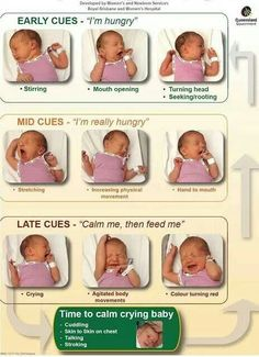 How to know when baby is hungry. Good aid for first time parents