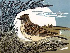 Skylark - http://www.pamgrimmond.co.uk/