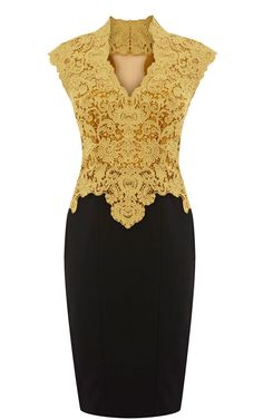 Embroidered Crochet Dress in Golden and Black