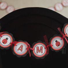 Ladybug I Am 1 Mini Banner Birthday Party - Red & Black