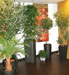 Anthracite ceramic pots Ceramic Pots, Plant Growth, Good Mood, Environment, Bloom, Ceramics, Plants, Design, Ceramica