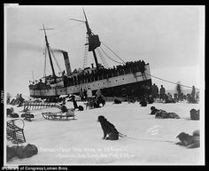 1914 Dog sled teams meeting the arrival of the SS Corwin in Nome, Alaska