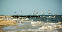 Corbu Beach, Romania ranks 4th on the most beautiful beaches in the world | The Romania Journal