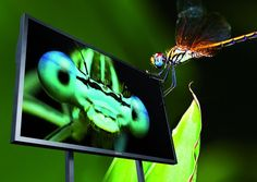 Ultra HDTV – Google+