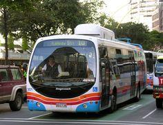 Trolibusz, Wellington, Új-Zéland