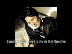 Air That I Breathe - k.d. lang cover