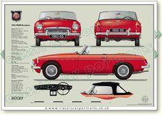 Classic car portraits