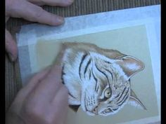 Cat Portrait in Pastel Pencils - Lesson 9 Drawing Sketches, My Drawings, Realistic Sketch, Pencil Painting, Pastel Pencils, Watercolour Tutorials, Pastel Art, Painting Lessons, Art Challenge