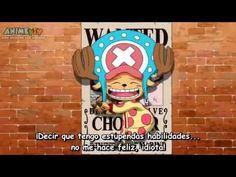 One Piece Desfile De Los Mugiwaras Dos Años Desp. - YouTube