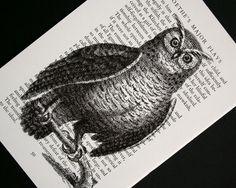 Vintage owl print. #MarthaStewartLiving. could incorporate print on old book pages on invite