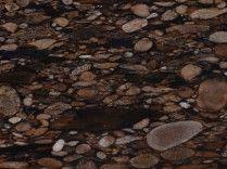 brown mosaic = Marinace Brown