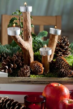 Adventní věnec je symbolem Vánoc už více než 150 let – Novinky.cz Christmas Diy, Christmas Decorations, Table Decorations, Hobbies And Crafts, Diy And Crafts, Three Season Room, Advent Wreath, Pine Cone Crafts, Holiday Wreaths