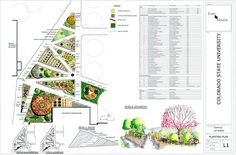 LANDSCAPE ARCHITECT   Planting Design
