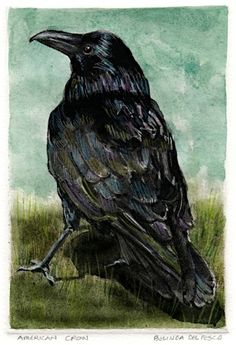 "Crows Ravens:  ""American #Crow,"" by Belinda del Pesco."