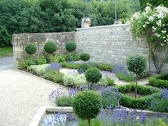 Side yard parterre - hate the pouffs.