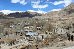 Autumn colours of Leh, Ladakh