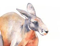 Kangaroo painting- K089 print of Watercolor Painting A4 print by Louise DeMasi
