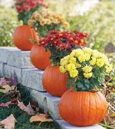 Pumpkin Planter.