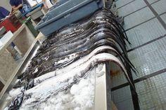 Fishmarket Funchal: black scabbard by Esther Oskam