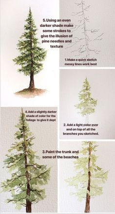 How to paint a watercolor pine tree, step by step process photos. How to paint a watercolor pine tree, step by step process photos. Watercolour Tutorials, Watercolor Techniques, Painting Techniques, Painting Lessons, Painting & Drawing, Painting Canvas, Diy Painting, Water Colour Painting Tutorial, Canvas Art