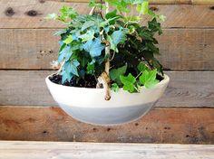 Wave hanging planter