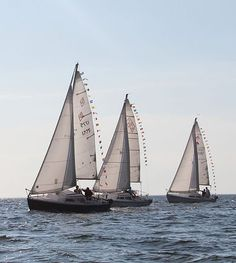 East Hampton, NY - Sail Montauk organizes short sailboat races with opportunities for all to get involved. Hurricane Alley, Montauk Yacht Club, Sailboat Racing, Sailing Charters, East Hampton, Tuesday, Light House, Night, Summer