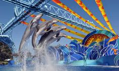 SeaWorld San Diego. Most popular attraction in San Diego. Clcik image for ticket deals and pacakges.