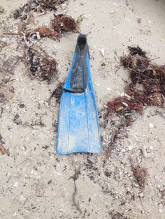 We found this flipper on a beach in Belize