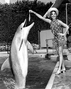 whatsjohnbeensmoking:    Natalie Wood has a dolphin.