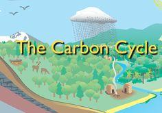 Κύκλος Άνθρακα