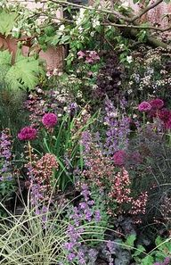 "Beautiful plant combination (Heuchera ""Veil of Passion"", fennel, Allium giganteum, Rheum ""Ace of Hearts"")"