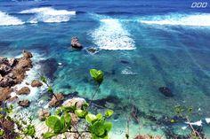 This Island Life x Lorna Jane does Bali - Move Nourish Believe