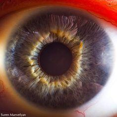 The fantastic macro photos of the human eye by Suren Manvelyan.Incredible close-up photos of Your beautiful eyes Human Photography, Close Up Photography, People Photography, Digital Photography, Color Photography, Photos Of Eyes, Close Up Photos, Cool Photos, Eye Close Up