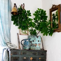 A vintage chest of drawers in green hues