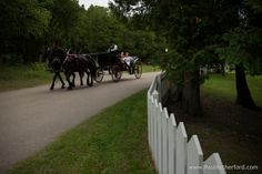 bride groom mackinac island wedding elopement photo by Paul Retherford with arrowhead wedding carriage and flowers by margaret's garden #puremichiganwedding #elopement #mackinacisland #steanneschurch #elope #northernmichiganwedding #destinationwedding