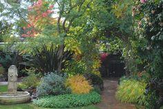 Rebecca's Back Garden | Harmony in the Garden