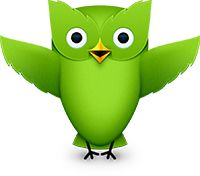 Duolingo: Free on line language courses teaching Spanish, English, German, Italian, and Portuguese. Spanish Language Learning, Language Lessons, Teaching Spanish, Foreign Language, Second Language, Spanish Basics, Spanish Lessons, Learn Brazilian Portuguese, Learn Spanish Online