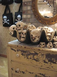 .....Although I will never look at a skull or skeleton in the same way again.