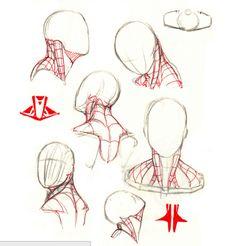neck, cuello,