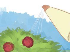 3e9201eb58f7a Immagine titolata Garden With Vinegar Step 7